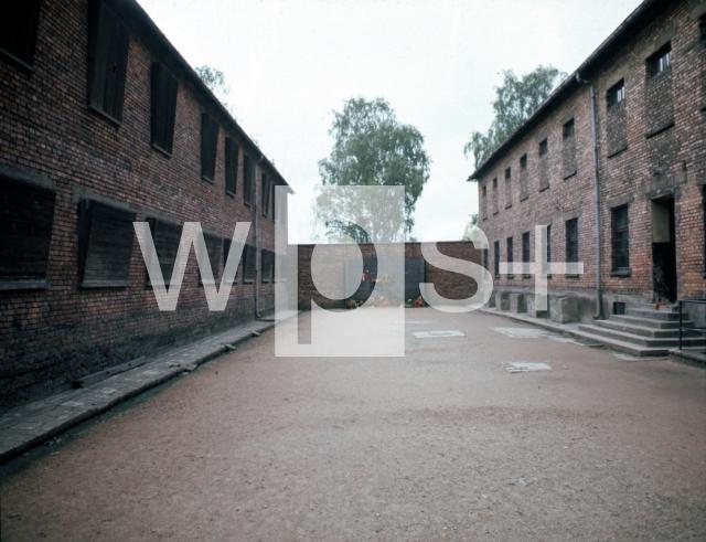 アウシュヴィッツ強制収容所の画像 p1_38