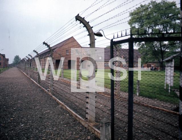 アウシュヴィッツ強制収容所の画像 p1_36