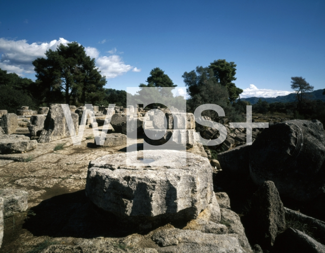 ナンマトルの画像 p1_36