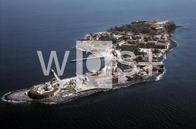 ゴレ島の画像 p1_13
