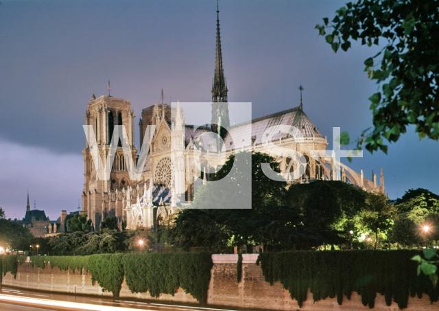 ノートルダム大聖堂 (パリ)の画像 p1_15